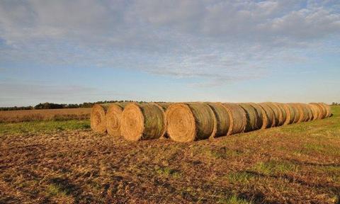 Na sprzedaż grunt rolny, orny i łąki w gm.Namysłów, woj.opolskie