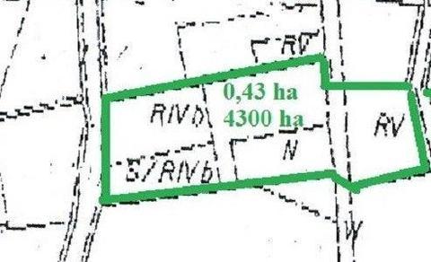 GRUNT ROLNY 4300 m2 MALOWNICZE MIEJSCE MOGILNO OKOLICE JEZIORA