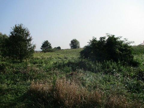 Grunt 1,40 ha + stodoła